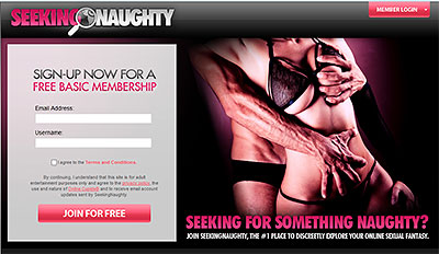 SeekingNaughty.com home page
