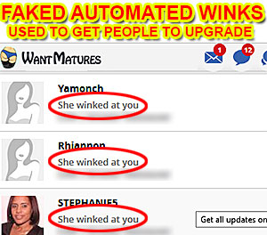 fake-winks